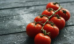 Branch with cherry tomatoes